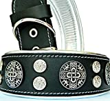 Bestia 'Hektor Genuine Leather Dog Collar, Large Breeds, Cane Corso, Rottweiler, Boxer, Bullmastiff, Dogo, 100% Leather, Studded, L- XXL Size, 2.5 Inch Wide. Padded. Europe`s Fnest Dog Gear!