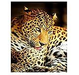 Tableau Peinture De Bricolage par Numéros Léopard Animal Moderne Mur Art Toile Peinture Peinture Acrylique par Numéros Art 40x50cm Encadré