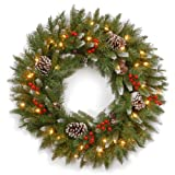 National Tree Company Pre-lit Artificial Christmas Wreath | Flocked with Mixed Decorations and Pre-strung White Lights | Frosted Berry - 24 Inch