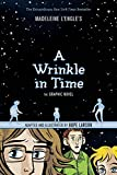A Wrinkle in Time: The Graphic Novel (Paperback)