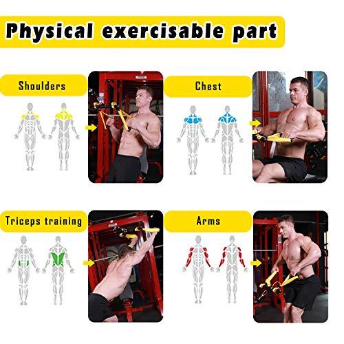51 QKPdGPGL - Home Fitness Guru
