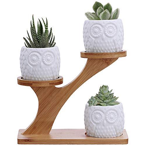 3pcs Owl Succulent Pots with 3 Tier Bamboo Saucers...