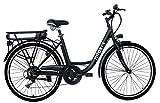 Nilox 30NXEB266VFM1V2 - Bicicleta eléctrica E Bike 36V 7.8AH 26X1.75P - J5, Motor 36 V 250 W,...