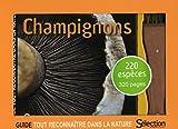 Coffret Champignons : guide + couteau à champignons