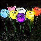 Outdoor Solar Flowers...image