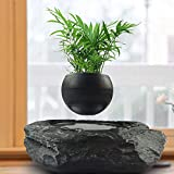 Porttil levitante maceta flotante Pot Aire Bonsai magntica Suspensin Planta Creative Design levitacin Bonsai - Home Office Decoraciones - Diversin Negro regalo (Color : Black, Size : M)