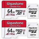 Gigastone Lot de 2 Carte memoire Micro SD XC 64 Go U1 avec Mini Coque et...