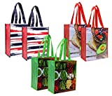 Planet E Reusable Grocery Shopping Bags – Durable Foldable Bags with colorful prints (Pack of 6)