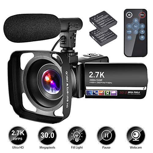 512zFk1M3XL - The 7 Best Budget Camcorders