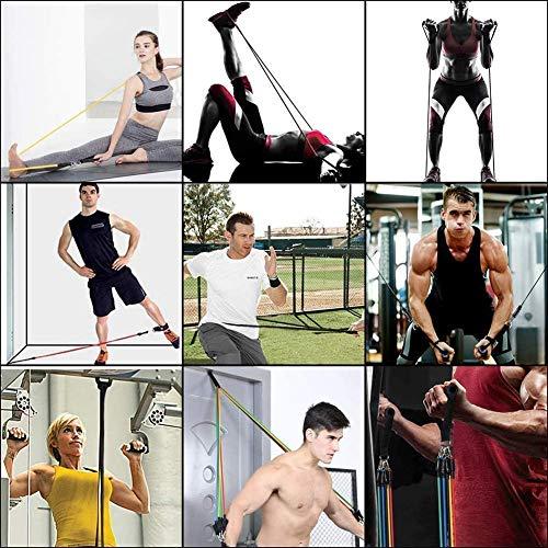 5130 RiLmUL - Home Fitness Guru