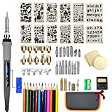 75Pcs Wood Burning Kit,Woodburning Tool with LCD Display Adjustable Temperature Soldering Woodburning Pen, Embossing/Carving/Soldering Tips/Carrying Case