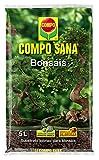 Compo Sana Bonsis con 8 semanas de abono, de Interior y Exterior, Substrato de Cultivo, 5 L, 37x23x5.5 cm