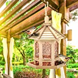 duquanxinquan Mangeoire pour Oiseau,Lanterne en Bois décoration à Suspendre,Mangeoire à Oiseaux Distributeur Suspendu Imperméable d'Extérieur Mangeoire pour décorer Votre Jardin