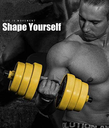 513GWdCDigL - Home Fitness Guru