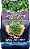Pennington Smart Seed Dense Shade Grass Seed, 7 lb