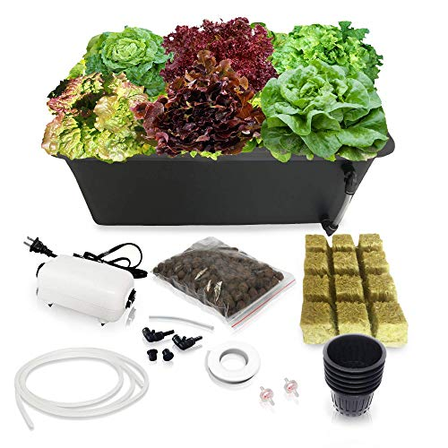 DWC Hydroponic System Growing Kit - Large Airstone, 6 Sites Bucket...