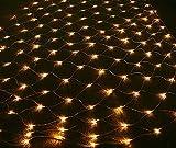 4ftx6ft 120-LED 12V...image
