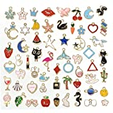 JIALEEY 60PCS Assorted Gold Plated Enamel Animal Moon Star Fruit Charm Pendant DIY for Necklace Bracelet Jewelry Making and Crafting