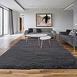 Asvin 5x7 Area Rug, Fluffy Living Room Area Rug, Luxury Large Area Rug, Non-Skid Fleece Carpets for Bedroom Home Décor, Soft Plush Furry Rug for Kids Room, Washable Floor Rug (5.3x7.5 Feet, Grey)