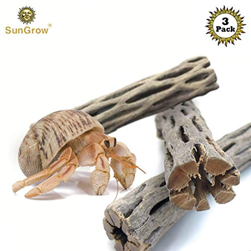 SunGrow 3 Hermit Crab Woods, Chew Toy and Source of Nutrition, Fun and Stimulating Activity for Little Climbers, Keep Hermies Busy & More Active, Long Dried Aquarium Décor Adds Raw Beauty