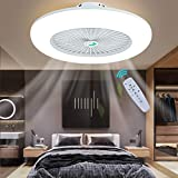 Ceiling Fan with Lights Lighting Fan LED Light Adjustable Wind Speed Remote Control Dimmable 3 Files Fan Chandelier Modern 22 Inch Invisible Acrylic Bedroom Living Room Can Timing Hanging Lamp (White)