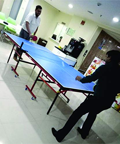 WEB SPORTS Table Tennis Table