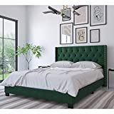 DG Casa Bardy Upholstered Panel Bed Frame with Diamond Tufted and Nailhead Trim Headboard, Queen Size in Green Faux Velvet Fabric