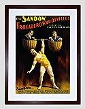 Advert Circus Vaudeville Sandow Strong Man Dumbell Framed Art Print B12X3023