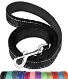 FunTags 6FT Reflective Dog Leash with Soft Padded Handle for Training,Walking Lead for Large & Medium Dog,1 Inch Wide,Black