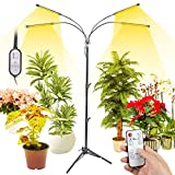 Grow Light with Stand, LED Floor Grow Lights for Indoor Plants, Full Spectrum Grow Lamp with Timer, 8 Dimmable Level & 4 Mode, Sunlike Plant Light for Houseplants, Succulent, Seedling, Flower