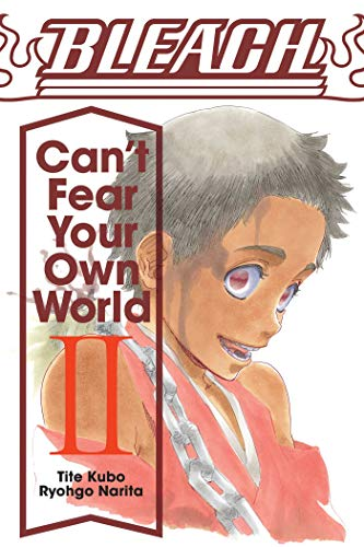 Bleach: can't fear your own world, vol. 2: volume 2