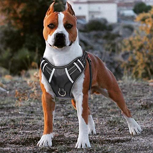 Babyltrl Dog Harness