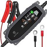 AUTOXEL Chargeur de Batterie Intelligent 6V/12V 3.8A, Compensation Automatique...