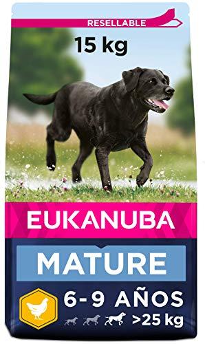 Eukanuba Comida seca para perros mayores de razas grandes con pollo 15...