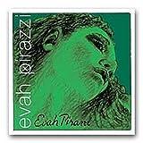 Pirastro Evah Pirazzi 419021Jeu Medium complet pour violon 4/4