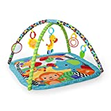 Bright Starts, Tapis d'Eveil Zippy Zoo