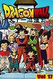 Dragon Martial arts Manga: Dragon-Ball-Full volume 17 (English Edition)