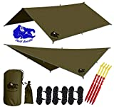 Chill Gorilla 10x10 Hammock Rain Fly Camping Tarp. Ripstop Nylon. 170' Centerline. Stakes, Ropes & Tensioners Included. Camping Gear & Accessories. Perfect Hammock Tent. OD Green