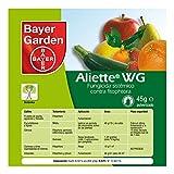 Protect Garden Aliete WG Fungicida sistmico, Verde, 45 gramos
