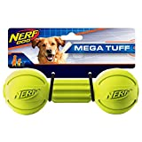 Nerf Dog Rubber Chew Barbell Dog Toy, Lightweight, Durable and Water Resistant, 7.5 Inches, For Medium/Large Breeds, Single Unit, Green (6994)