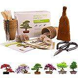 BONSAI CULTIVA 6 DE TUS PROPIOS rboles de bonsai. Kit de germinacin JUEGO DE REGALO DE JARDINERA Con 3 herramientas principales, juego de regalo premium, paquete de gran valor, idea de regalo nica