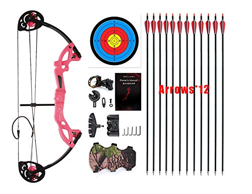 PANDARUS Compound Bow Archery for Youth and Beginner, Right Handed,19-28 Draw Length,15-29 Lbs Draw Weight, 260 fps, Package with Archery Hunting Equipment (Pink)