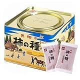 浪花屋製菓 元祖 柿の種 27g×12袋 レギュラー缶
