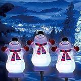 Christmas LED Path...image