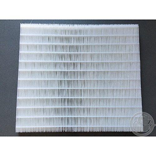 Filtre pompe chaleur Aeromax Thermor 029370