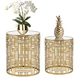 Homebeez End Tables Set of 2 Gold Nesting Side Coffee Table Decorative Round Nightstands (Stainless Steel Top)