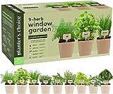 9 Herb Window Garden - Indoor Herb Growing Kit - Kitchen Windowsill Starter Kit - Easily Grow 9 Herbs Plants from Scratch with Comprehensive Guide - Unique Gardening Gifts for Women & Men
