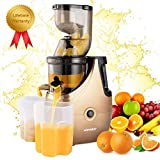 Masticating Juicer Machines Cold Press Slow Juicer Juice Extractor with 3 inches Chute Easy to Clean, Quiet Motor, Reverse Function for Fruits and Vegetables, High Yield, BPA-Free with Brush