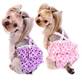 Alfie Pet - Frona Diaper Dog Sanitary Pantie with Suspender 2-Piece Set for Girl Dogs - Size: Small
