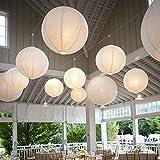 10 Stücke Papierlaterne Laterne Deko Feier Lampions Papierlampen mit 10er Mini LED Lichter (Weiß Lampion + Warmweiß Mini Led-Ballons Lichter, 20cm)